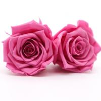 DIY Pink Preserved Rose Heads Pretty Appearance Keeping Everlasting Memory Manufactures