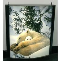 Quality Waterproof Light Box Poster Printing , Backlit Film Printing for sale