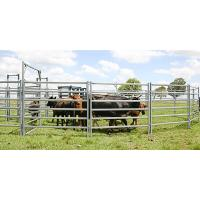 26 Panel  Horse Stable Inc Gate, Round Yard, Cattle Fences, Corral 18m Diameter Manufactures