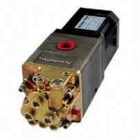 1L High-pressure Pump, Uses Brushless DC Motor Manufactures