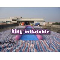 Purple / Blue 0.9mm PVC Inflatable Big Air Slide / Circle / Blob For Water fun Manufactures