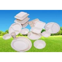 Biodegradable, Disposable 450ml Paper Box (B003) Manufactures