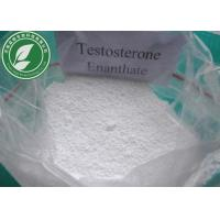Raw Steroid Powder Testosterone Enanthate CAS 315-37-7 With Safe Delivery Manufactures