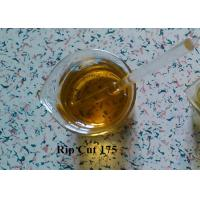 Cheap Oily Injectable Anabolic Steroids Rip Cut 175 for Bodybuilders for sale