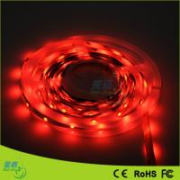 2900k - 3200k Warm White 3528 Led Rope Lights For Outdoor Decoration Manufactures