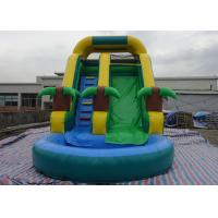 Amusement Inflatable Water Slide PVC Tarpaulin For Kids Fun Inflatable Water Park For Kids Manufactures
