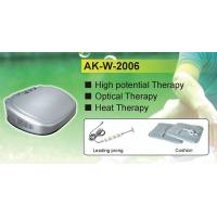 Energy Silver Electrostatic Therapy Machine Electric Therapy Machine Professional Manufactures