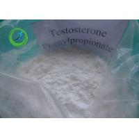 Cheap Injectable Raw Hormone white Powder Testosterone Phenylpropionate for restraining Anemia for sale