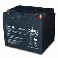 UPS Battery with 12V Voltage, 40mAh Capacity, Sized 197 x 165 x 170mm Manufactures