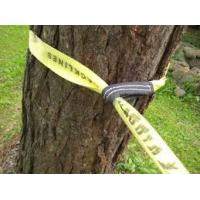 Customized Balance Polyester Tightrope Walking Strap For Outdoor Sports Manufactures
