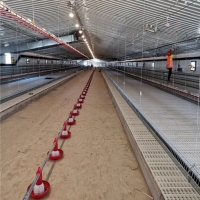 24 Holes PVC Pipe Chicken Feeders And Water Systems Manufactures