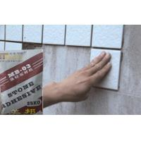 Outdoor Strong Waterproof Tile Adhesive , Marble And Mosaic tiles adhesive Manufactures
