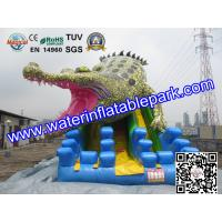 Commercial Crocodile Inflatable Slide , Inflatable Water Slide For Rental Manufactures