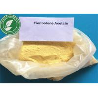China Anabolic Steroid Hormone CAS 10161-34-9 Trenbolone Acetate For Fat Loss on sale