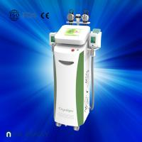 Quality Fat dissolving cryolipolysis machine / vacuum slimming beauty machine with Bottom Price for sale