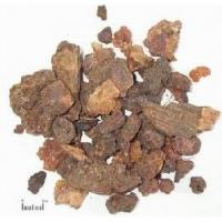 Moschus/Musk/Traditional chinese medicine,She Xiang