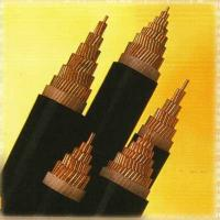0.6/1kv Xlpe Insulated Power Cable xlpe insulated power cable Manufactures