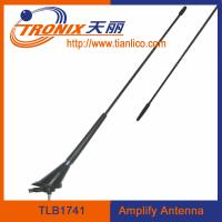roof mount car electronic antenna/ black color car amplifier antenna/ car am fm antenna TLB1741 Manufactures