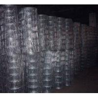 Green galvanized steel Wire mesh Fence tree protection fencing Manufactures