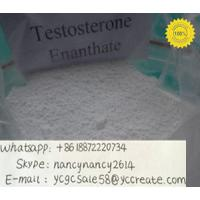 China Raw Hormone Powders Enanthate Testosterone Anabolic Steroid CAS 315-37-7 on sale