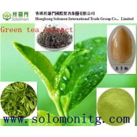 Cheap 2015 Hot-selling Natural Green Tea Extract, Green Tea Extract Powder,Tea Polyphenol/EGCG for sale