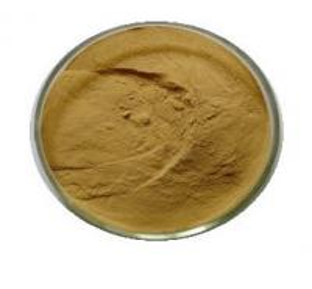 China 100% Natural Psyllium Husks extract, Psyllium Husks extract powder 10:1 on sale