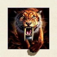 Strong 5d Deep Effect Lenticular Photo Printing 40x40cm Picture Tiger / Wolf Manufactures