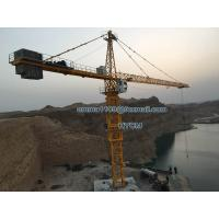 Cheap 70M Arm Booom 20tons Load TC7050 Hammerhead Crane Tower 5m Mast Section for sale
