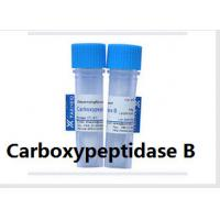 Cheap Sequence Grade Carboxypeptidase B for Mass Spectrometry Analysising lysine Peak Antibody for sale