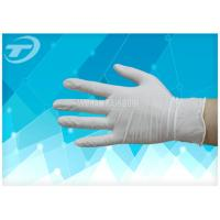 China Medical Disposable Gloves Latex Examination Glove , Powder And Powder Free on sale
