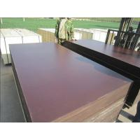 China Film Faced Plywood, Structure Plywood, Concrete Plywood on sale