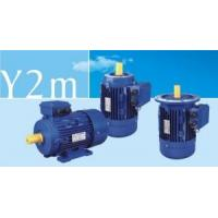 Three-Phase Electric Motors (Y2m Series) Manufactures