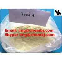 China BodyBuilding Tren Anabolic Steroid Trenbolone Acetate Tren A For Muscle Building on sale