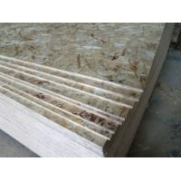 1220*2440, 1250*2500MM waterproof OSB Board mamufacturer & 9mm osb board for construction Manufactures