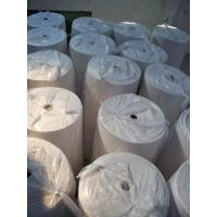 Absorbent Embossing big Roll Tissue Sanitary Paper support Customizable Size Package Manufactures