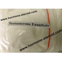Cheap Normal Testosterone Enanthate Injection Testosterone Raw Powder For Women CAS 315-37-7 for sale