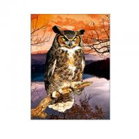 30x40cm Size 3D Pictures Of Animals 0.6mm PET Material Durable Manufactures