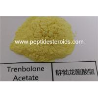 China High Purity Trenbolone Acetate Tren Ace Hormone Injection For Muscle Gain on sale