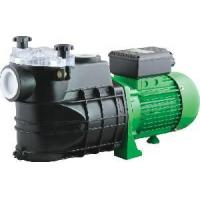 FCP Swimming Pool Filter Pumps Manufactures