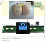 Smart Egg Stamping Machine With High Capacity USB Flash Drive Internal Storage