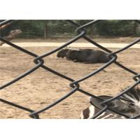 Heavy Black Chain Link Fence 5.0 Diameter 6cm X 6cm Hole For Zoo Manufactures