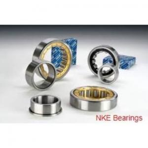 NKE NJ219-E-MPA cylindrical roller bearings Manufactures