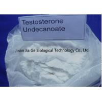 China Steroid Injectable white powder Testosterone Undecanoate for Muscle Gaining 5949-44-0 on sale
