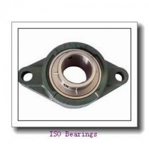 80 mm x 170 mm x 39 mm NSK NJ316EM cylindrical roller bearings Manufactures