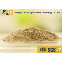 Livestock Fish Bone Meal / Fish Powder Fertilizer Maintain Normal Metabolism