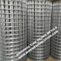 2 X 2 Galvanized Welded Wire Mesh Rolls Anti - Corrosion For Garden Decorative Manufactures