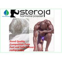 Raw Steroid Powders Testosterone Phenylpropionate Manufactures