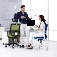 Adjustable Armrest Ergonomic Conference Chair In Stereotypes Cotton For Back Pain Manufactures