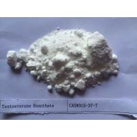 Cheap White Testosterone Steroids Testosterone Enanthate 250 CAS 315-37-7 for sale