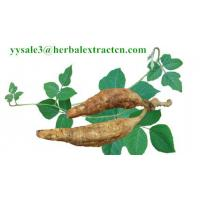 Kudzu Root extract, Isoflavones 40%, CAS No.: 3681-99-0, Auxiliary lower blood pressure, Arctium Extract, Chinese Extrac